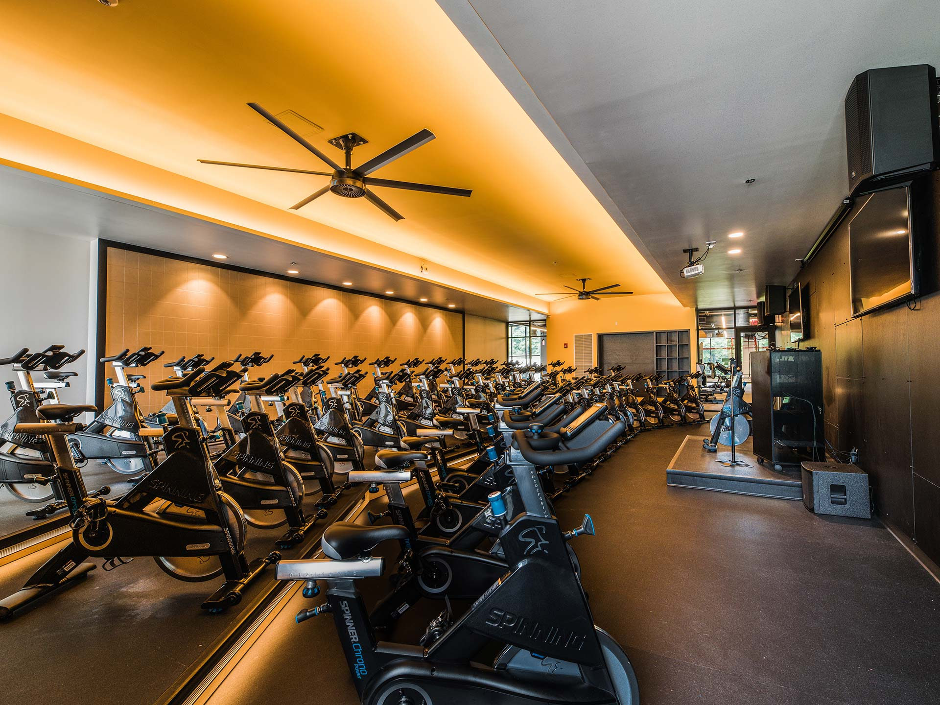 Fitness Lighting - Cedardale